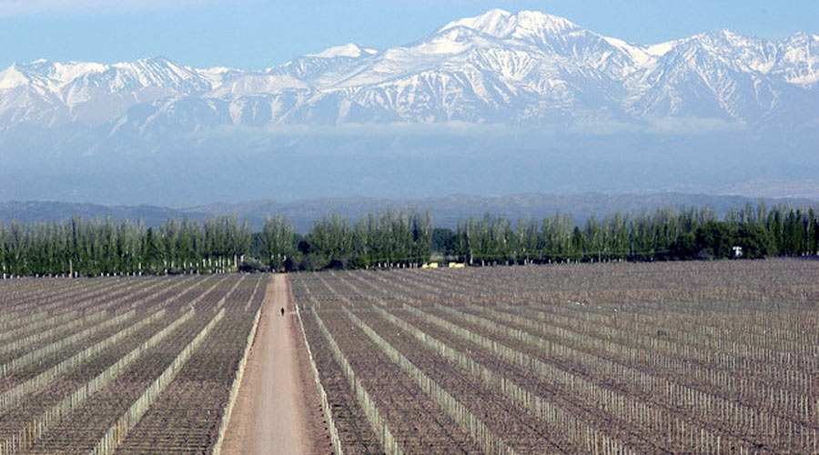 Buenos Aires, patagonian lakes and vineyards, including andean crossing